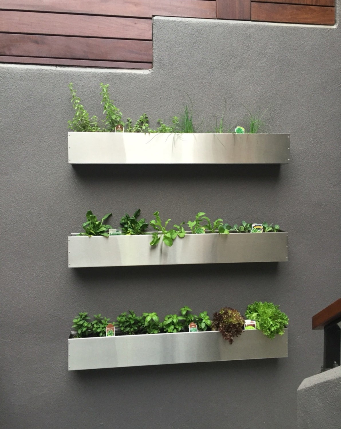 floating stainless steel hanging planter box succulent wall. Black Bedroom Furniture Sets. Home Design Ideas
