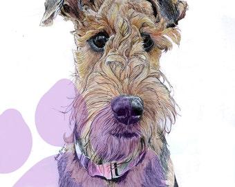 A2 Pet Portrait