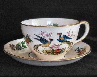 Johnson Bros Pareek Cup & Saucer in the JB59 pattern