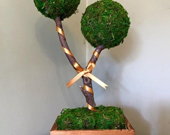 Double Bubble Moss Topiary