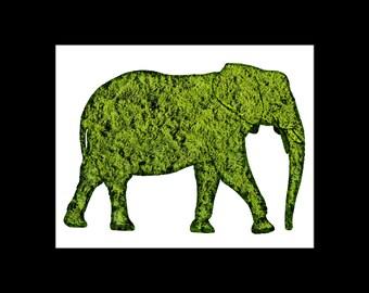 Elephant Topiary Print