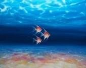 Print on Canvas - Beautiful Trio of Angel Fish under a big blue sea