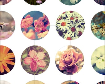 Digital Collage Sheet, Flower, Summer, Printable Downloads, Pendant, Cabochon, 20mm 18mm 16mm 14mm 12mm Circles, dcc088s