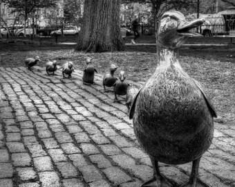 Boston Photography, Make Way For Ducklings, Boston black and white, Boston Art, Black & White Square Print, Boston Public Garden, Boston Art
