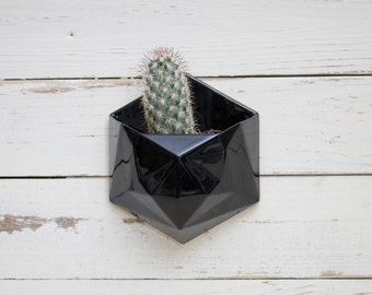 Black geometric hexagon ceramic wall hanging planter with wood back