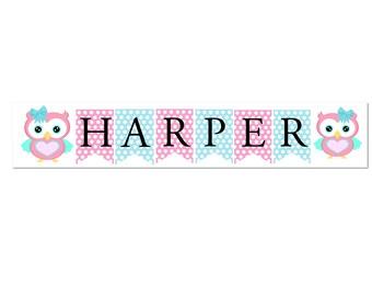 1st First Birthday Girl Custom Made Woodland Owl Name Bunting Banner