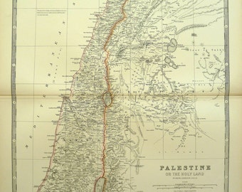 Palestine or the Holy Land - original antique map (1881)