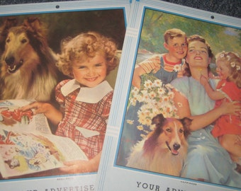 Two Collie Dog Calendar Samples from 1955