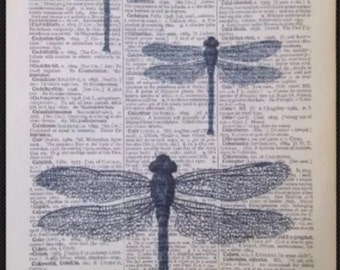 Vintage Dragon Fly print Original Dictionary Book Page Wall Art Picture gift