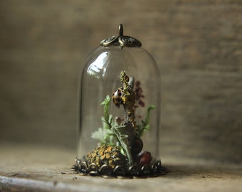 glass dome terrarium with ladybugs lichens moss wicca nature