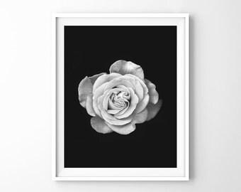 Rose, flower, floral, botanical print, scandinavian wall art, minimalist black and white, affiche scandinave, rose print, nordic art design