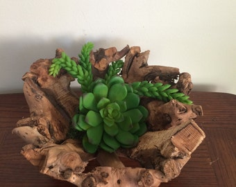 Deidtwood bowl with succulents