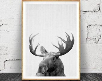 Moose Print, Forest Woodlands Animal Wall Art, Nursery Printable, Gender Neutral, Children's Gift, Black White Kids Room Decor, Wilderness