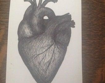 Original ink art - anatomically correct heart
