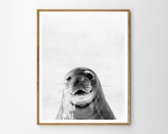 Fur seal print, Nursery decor, Animal art, Wall Art, Minimalist, Digital art, Printable, Digital print Instant Download 8x10, 11x14, 16x20