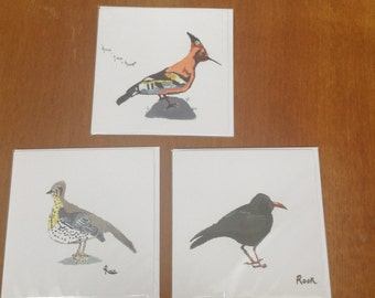 Printed bird cards