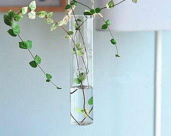 Hanging Cylindrical Glass Vase,Indoor Water Planting Vase for House Ornament,Decorate Your Livng Wall