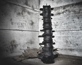 Black Beeswax Spine Candle - LARGE Plague Collection