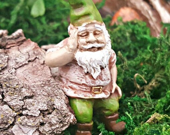 Miniature Iggy the Gnome