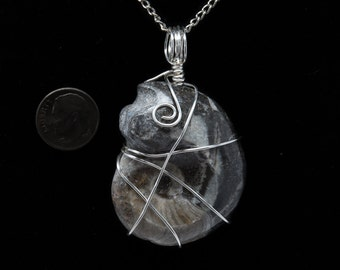Wire Wrapped Snail Fossil Reiki Infused Pendant