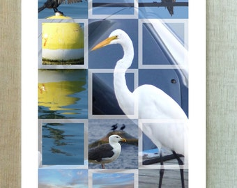 Shore birds - Blank card – bon voyage – beach -  bird lovers