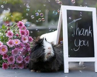 De Mannies Thank you Greeting Card
