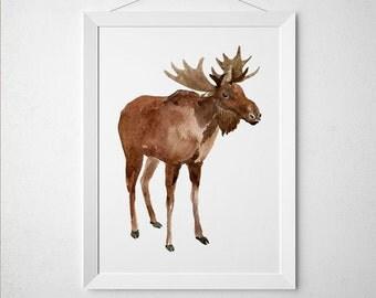 Nursery print Elk poster Animal print Wildlife art ACW457