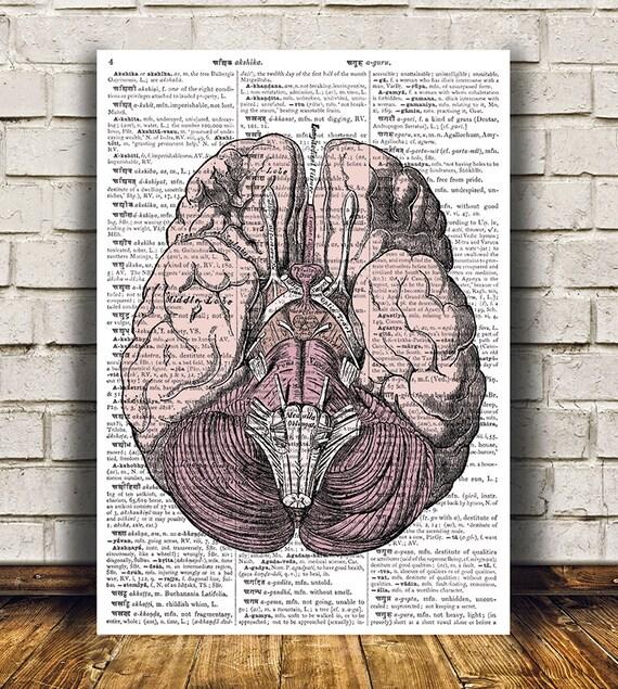 Free human anatomy posters