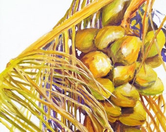 Coconuts study