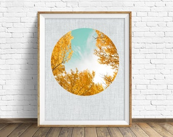 "landscape photography, large art, large wall art, printable art, instant download printable art, round photograph, leaves - ""Fall Leaves"""