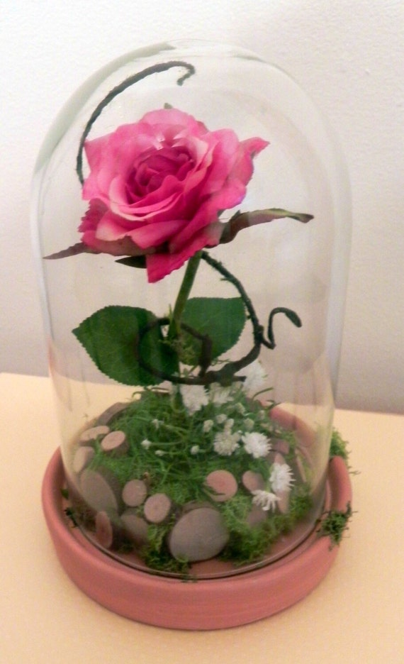 Rose terrarium single centerpiece in dome
