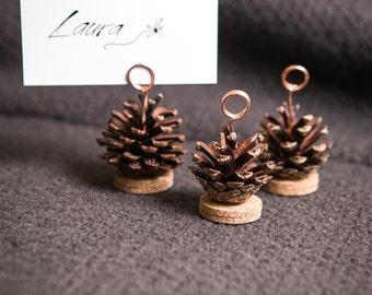 wedding pinecone place card