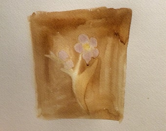 Coffee painting. Flower painting. Purple flower. 11x14Abstract