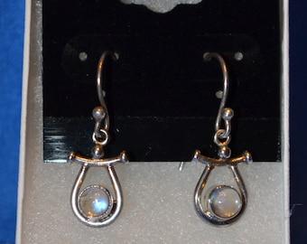 E-011: Solid Sterling Silver Dangle Rainbow/Clear Round Bezel Set Cabochon Hook Earrings