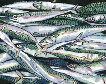 Mackerel catch; fish art print from an original watercolour and acrylic painting,blue,green,white,Cornwall,pink,