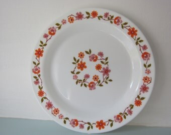 Vintage French Arcopal Plates . Scania boho chic Milk Glass