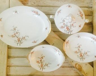 Vintage Noritake Brenda Pattern China