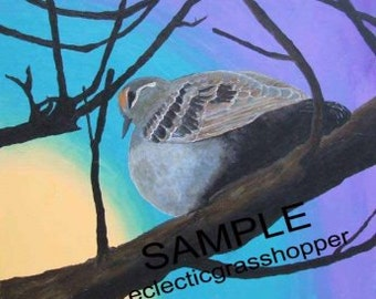 Common Bronzewing (Phaps chalcoptera) print of acrylic on canvas