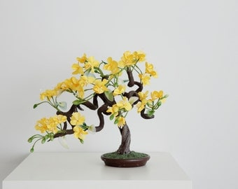 Bonsai Tree Yellow Blossom