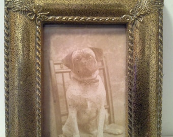 Adorable vintage photo of dog in gold tone frame, with glass