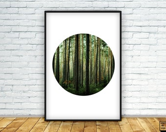 Circle Forest Print, Forest Photo Print, Woodland print, Printable, Nature Art, Wall Art Prints, Landscape print, Digital Print, A2