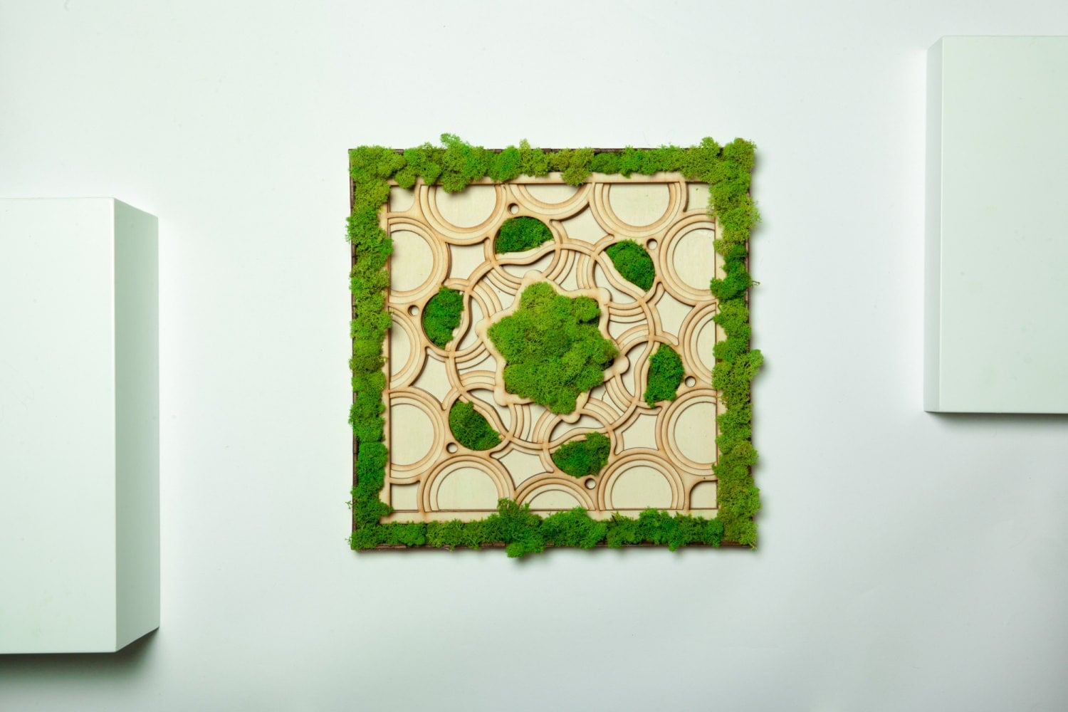 Mandala Live Moss, moss art, nature art, wall art, laser cut ...