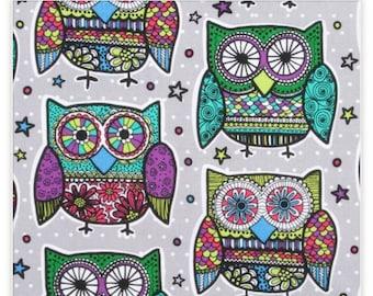 Whmsy special- owl kids bag