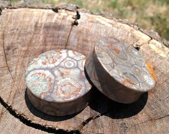 35mm (1 3⁄8 Inch) Mexican Birdseye Jasper Stone Plugs. . 14mm wearable surface.