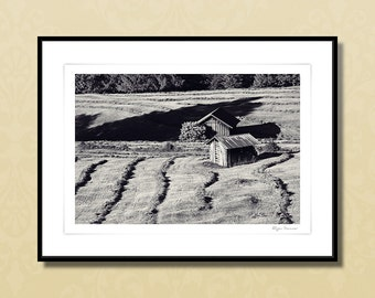 Fine art photography, 30x40 cm premium art print, Germany Allgäu, black and white, summer meadow, travel gift, nature photography, rural art