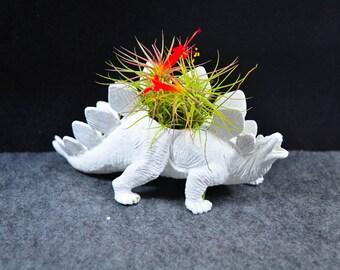 Any Color Medium Plantasaurus / Stegosaurus Dinosaur Planter with Air Plant, Air Plant Holder, Dino Planter, Low Shipping, Great Gift