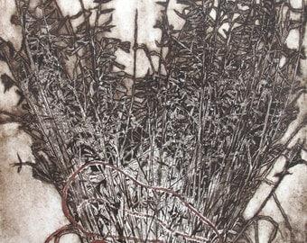 Foxtail Grass Plant Etching, Original Print, Modern Art, Vintage Art, Wall Art, Minimalist Art, Estate Sale