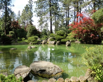 Beautiful Peaceful Park