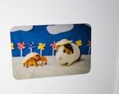 Fridge Magnet: Beachtime Guinea Pig