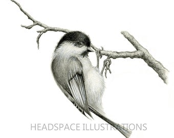Black and White Chickadee Realistic Bird Tree Branch Twig Nature Neutral Modern Nursery Black White Art Print by Headspace Illustrations